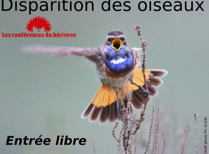 L'hiver arrive : voilà comment prendre soin des oiseaux [Le Dauphiné Libéré]