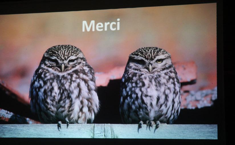 Conférence – Le déclin des oiseaux